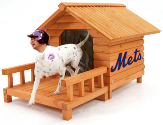 The Mets' Doghouse