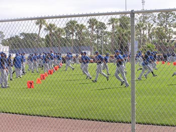 Mets in spring training