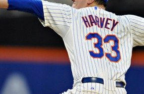 Scientist: Matt Harvey Could Return in 2014